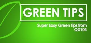 GreenTips_300_qx